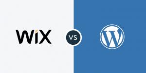 pagina web en monterrey con wordpress vs wix